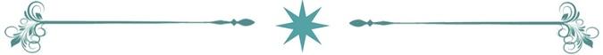 Teal Star Divider 675x62