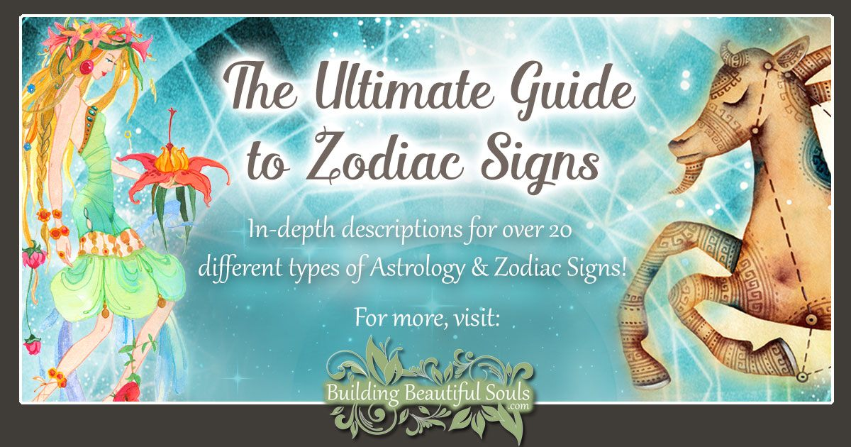The Ultimate Guide to Zodiac Signs 1230x960