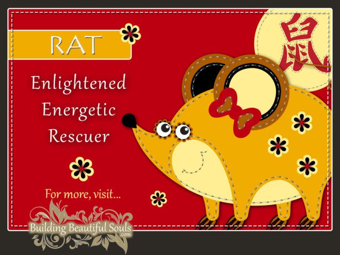 Chinese Zodiac Rat - Year of the Rat - Chinese New Year Animals 1290x960