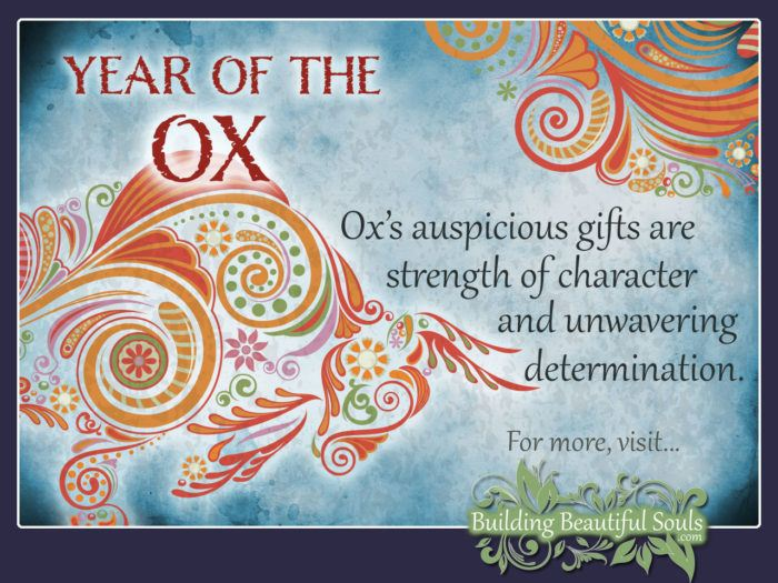 Chinese Zodiac Ox & Year of the Ox 1280x960