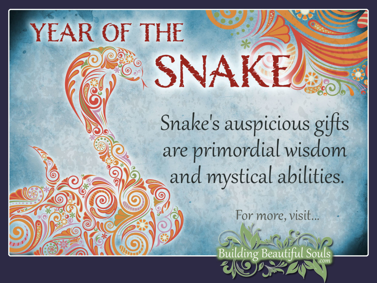 Chinese Zodiac Snake | Year of the Snake | Chinese Zodiac Signs ...