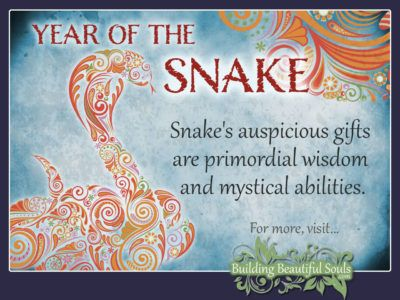 Chinese Zodiac Snake & Year of the Snake 1280x960