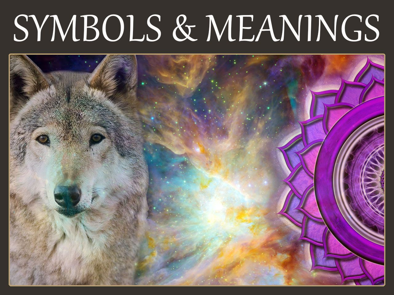 Symbols And Meanings Animals Crystals Dreams Flowers Native