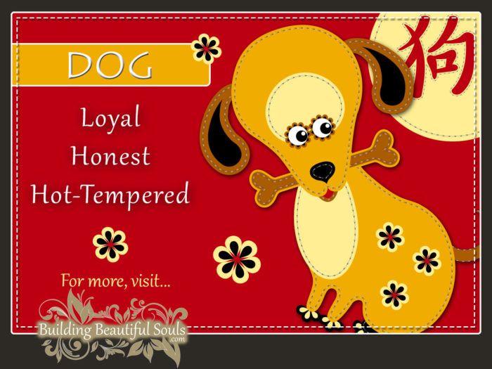 Chinese Zodiac Dog - Year of the Dog - Chinese New Year Animals 1280x960