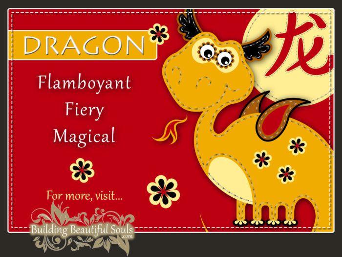 Chinese Zodiac Dragon - Year of the Dragon - Chinese New Year Animals 1280x960