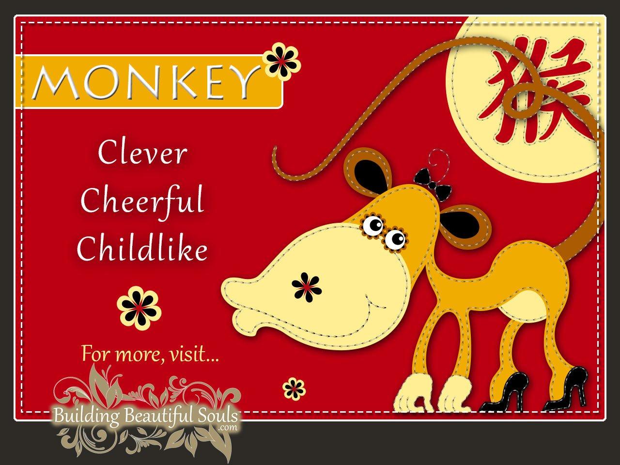 Chinese Zodiac Monkey Year Of The Monkey Funny