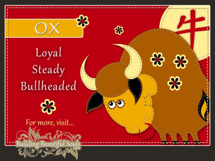 Chinese Zodiac Ox - Year of the Ox - Chinese New Year Animals 1290x960