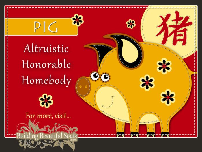 Chinese Zodiac Pig - Boar - Year of the Pig - Boar - Chinese New Year Animals 1290x960