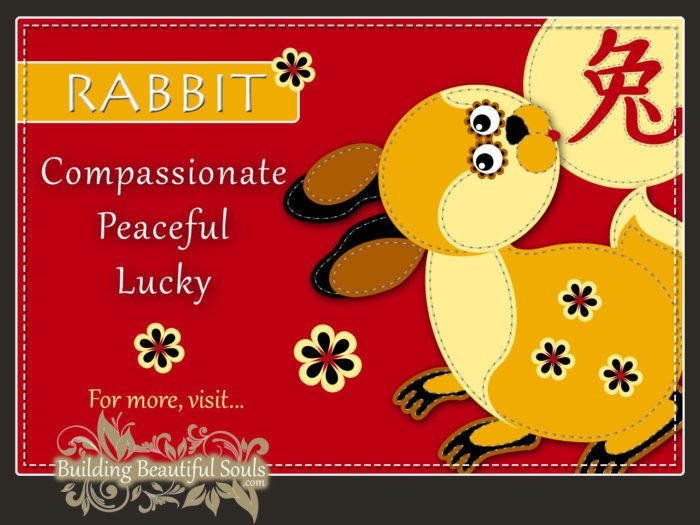 Chinese Zodiac Rabbit - Year of the Rabbit - Chinese New Year Animals 1280x960
