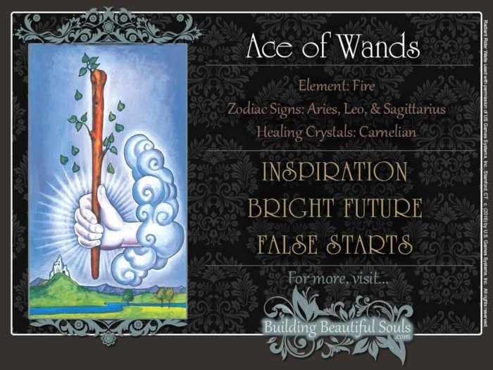 Ace of Wands Tarot Card Meanings Rider Waite Tarot Deck
