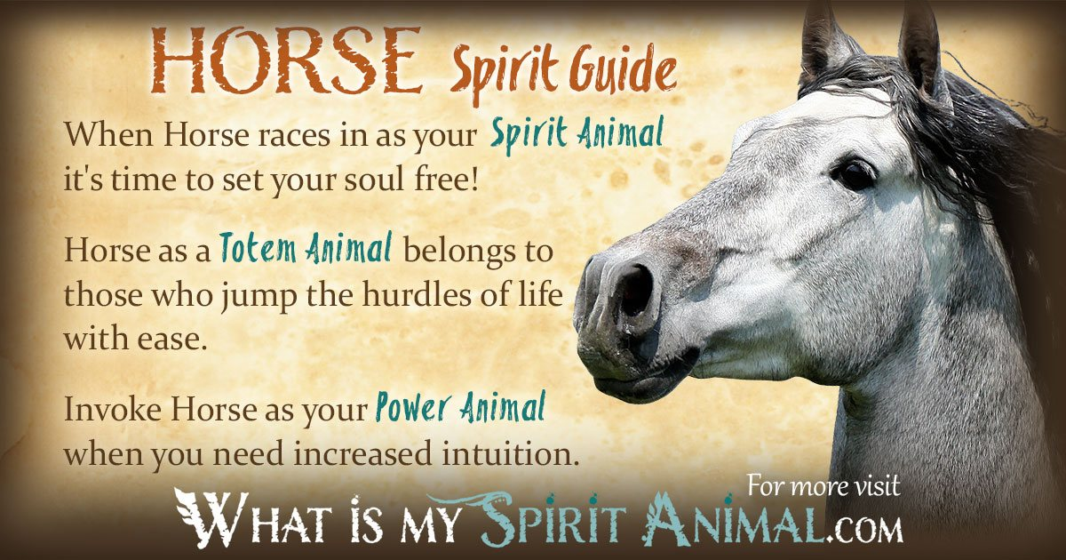 Horse Symbolism Meaning Spirit Totem Power Animal