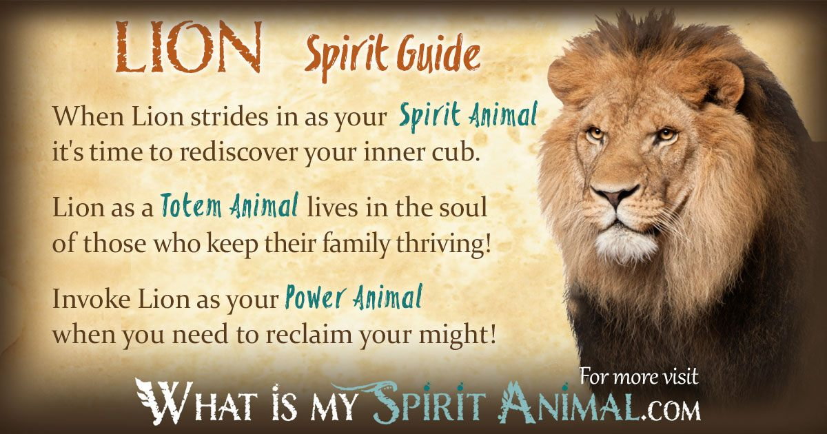 Lion Spirit Totem Power Animal Symbolism Meaning 1200x630