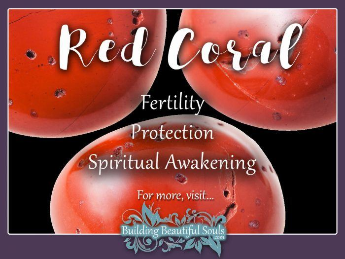 Red Coral Meaning & Properties - Healing Crystals & Stones 1280x960