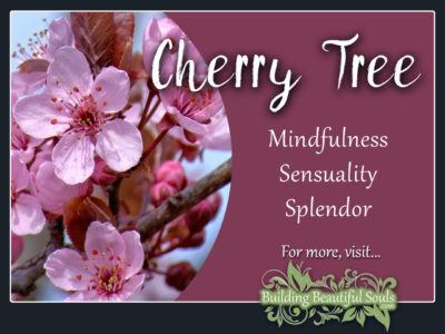 Cherry Tree Meaning Symbolism Flower Meanings 1280x960