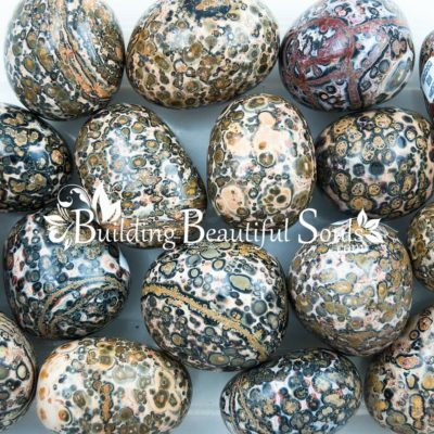 Healing Crystals Stones Tumbled Leopardskin Jasper Metaphysical New Age Store 1000x1000