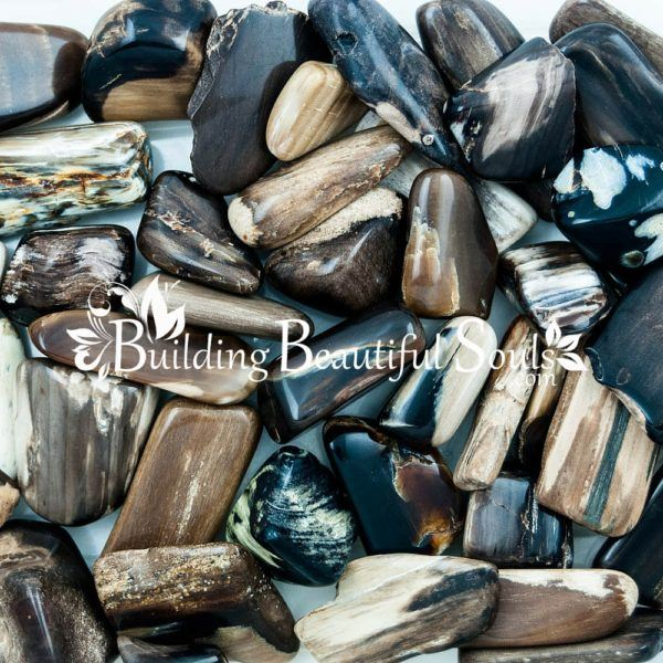 Healing Crystals Stones Tumbled Petrified Wood Metaphysical New Age Store 1000x1000