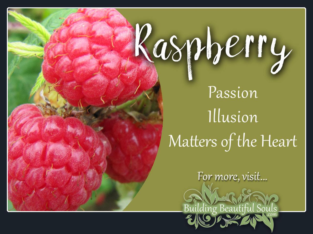 Raspberry Meaning Symbolism Flower Meanings 1280x960