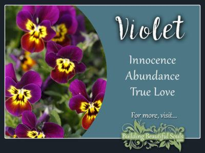 Violet Meaning Symbolism Flower Meanings 1280x960