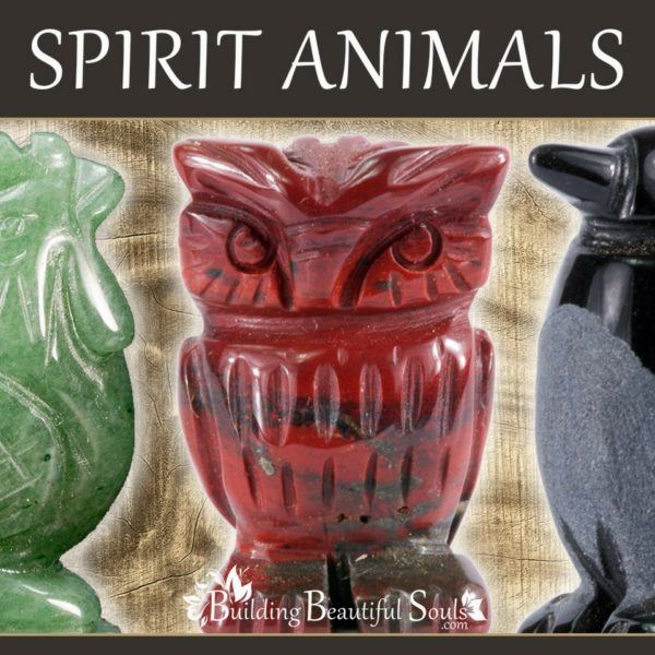 Spirit, Totem & Power Animals