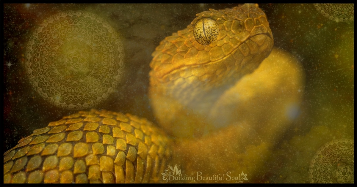 Dreams About Snakes - The Complete Guide to Snake Dream