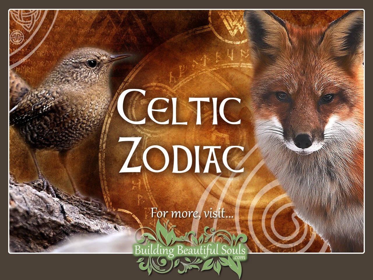 Celtic Zodiac Animal Meanings & Celtic Astrology 1280x960