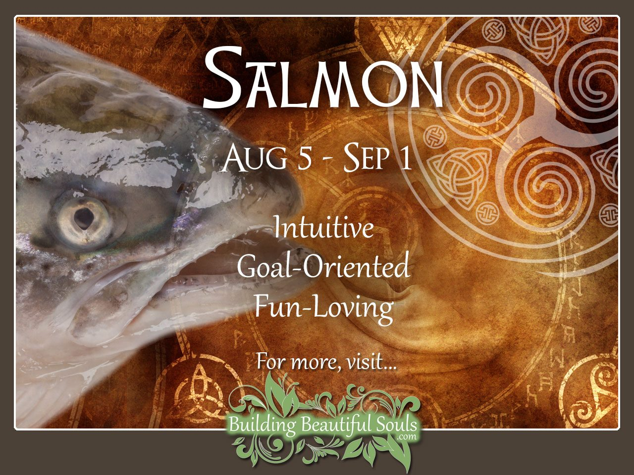 Salmon Celtic Zodiac Animal Meanings, Traits, & Personality 1280x960