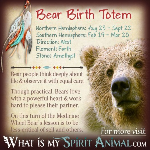 Native American Zodiac Bear Birth Totem 1200x1200