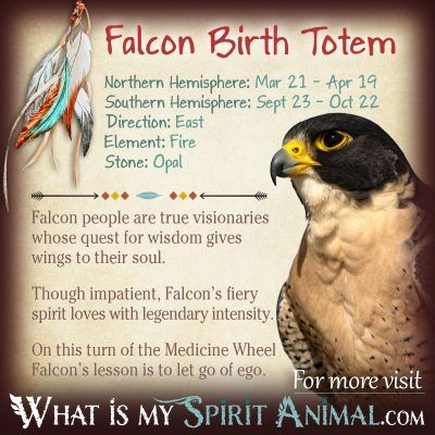 Native American Zodiac Falcon Birth Totem 1200x1200