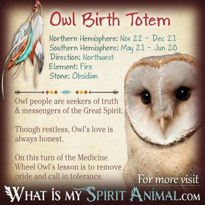 Native American Zodiac Owl Birth Totem 1200x1200
