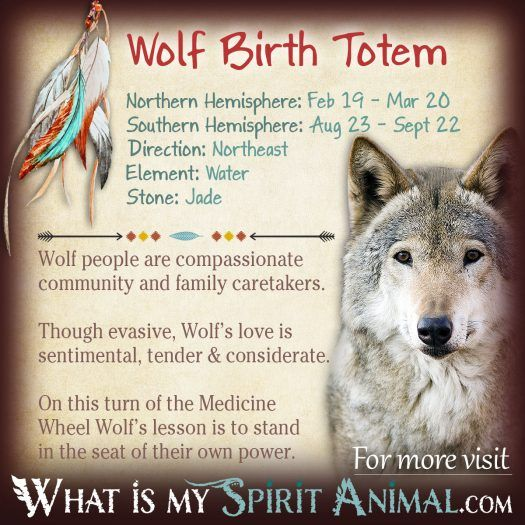 Native American Zodiac Wolf Birth Totem 1200x1200