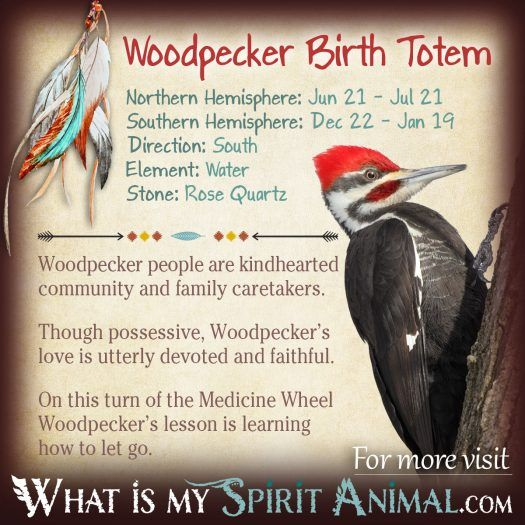 Native American Zodiac Woodpecker Birth Totem 1200x1200