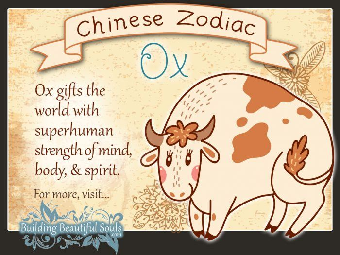 Year of the Ox in Chinese Zodiac for Kids 1280x960