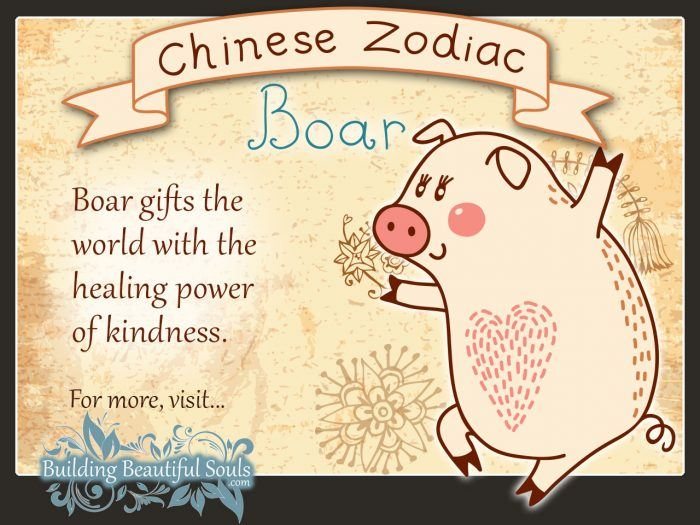 Year of the Pig or Boar in Chinese Zodiac for Kids 1280x960