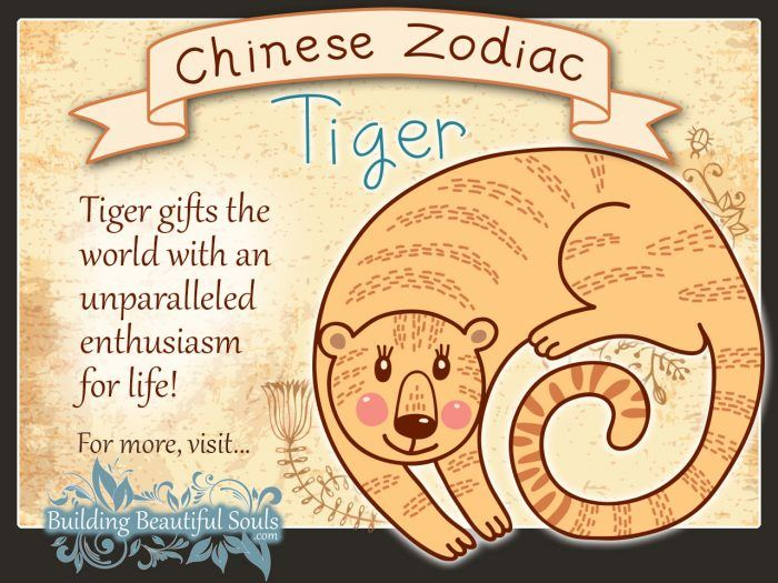 Year of the Tiger in Chinese Zodiac for Kids 1280x960