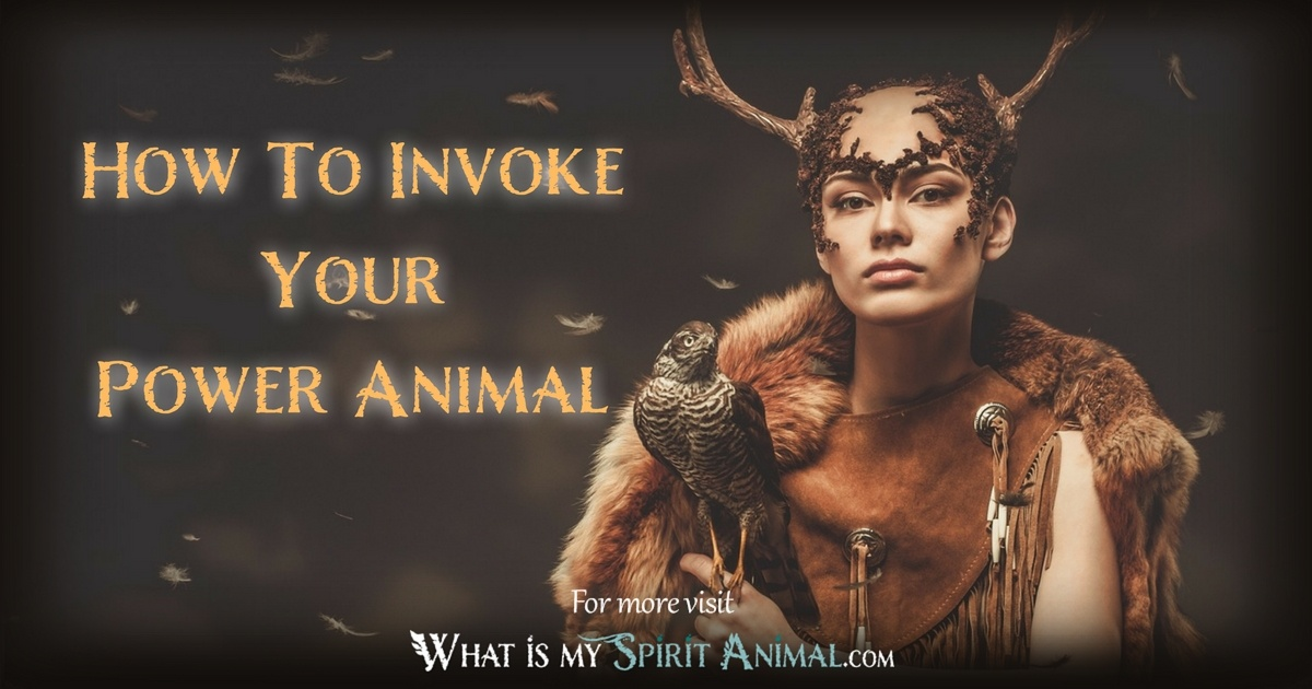 How To Invoke Your Power Animal 1200x630