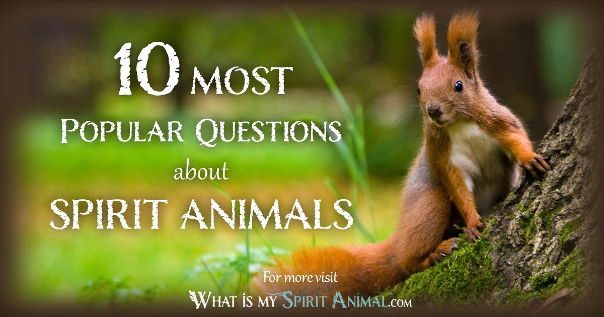 What Is A Spirit Animal 1200x630