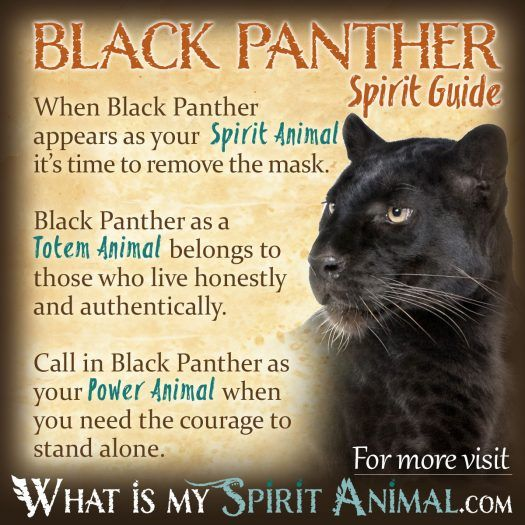 Black Panther Spirit, Totem, & Power Animal 1200x1200