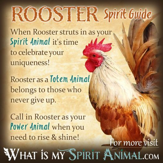 Rooster Spirit, Totem, & Power Animal 1200x1200
