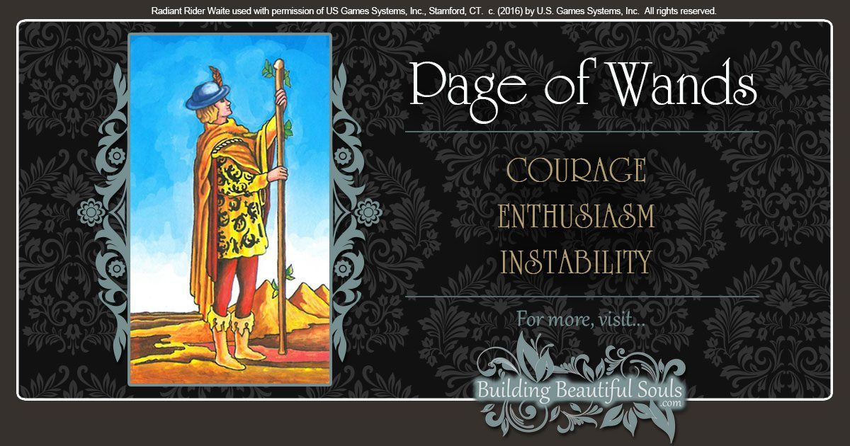 The Page Of Wands Tarot Card Meanings Tarot Reading