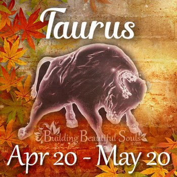 Taurus Horoscope November 2018 350x350