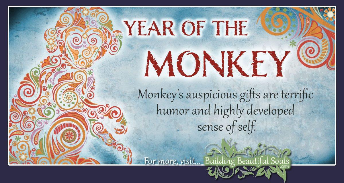 Chinese Zodiac Monkey   Year of the Monkey   Chinese Zodiac Signs