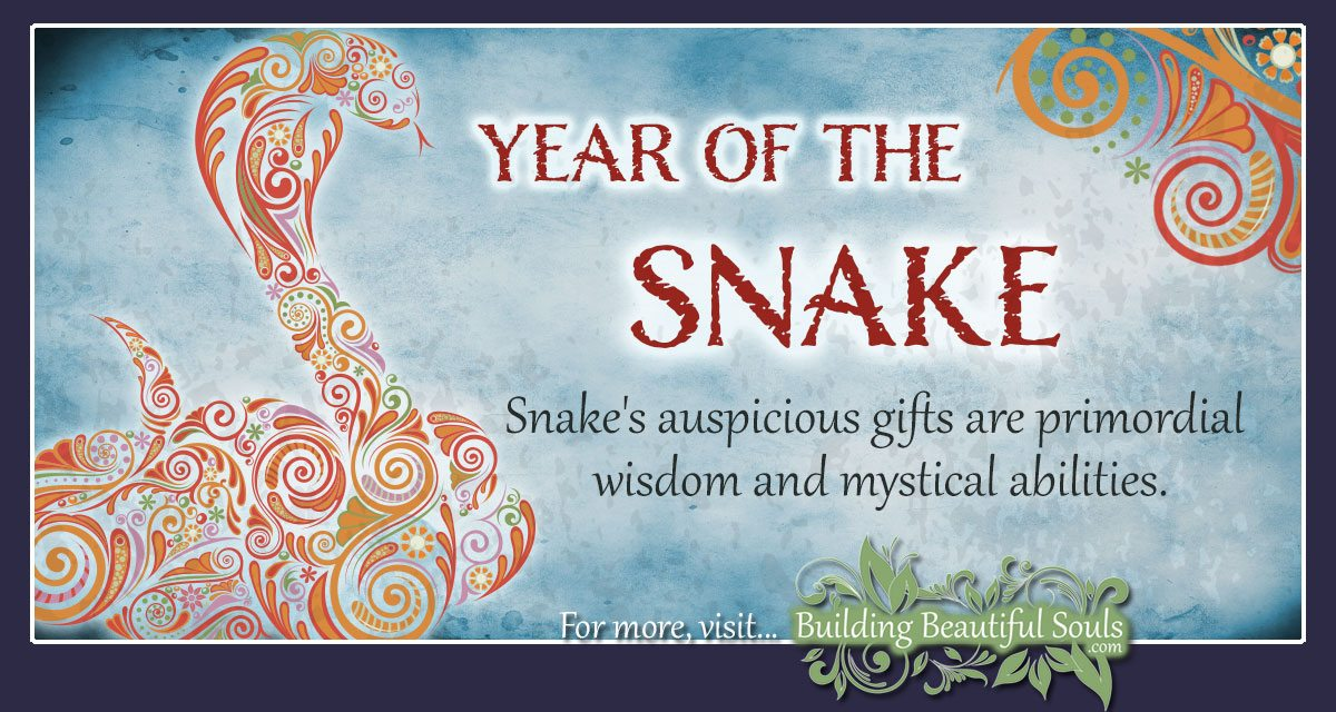 Chinese Zodiac Snake | Year of the Snake | Chinese Zodiac Signs Meanings