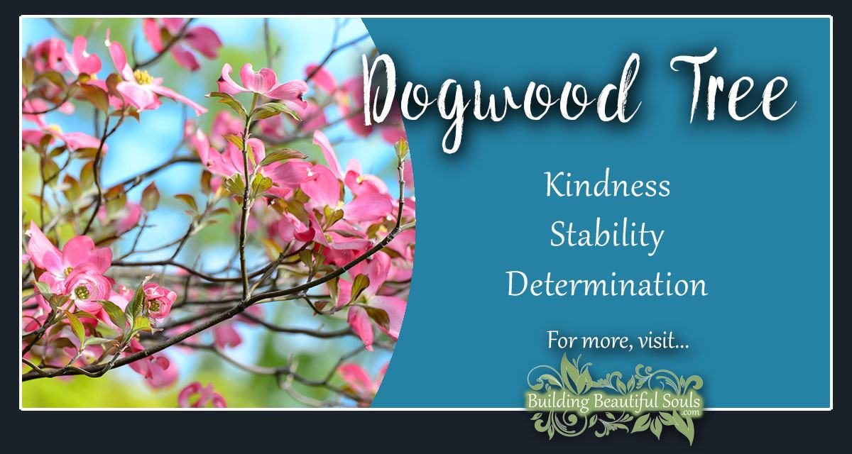 image relating to Legend of the Dogwood Tree Printable named Dogwood Tree This means Symbolism Tree Symbolism Meanings