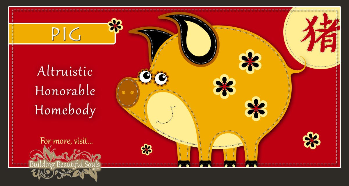 Chinese Zodiac Pig | Year of the Pig | Funny Horoscopes